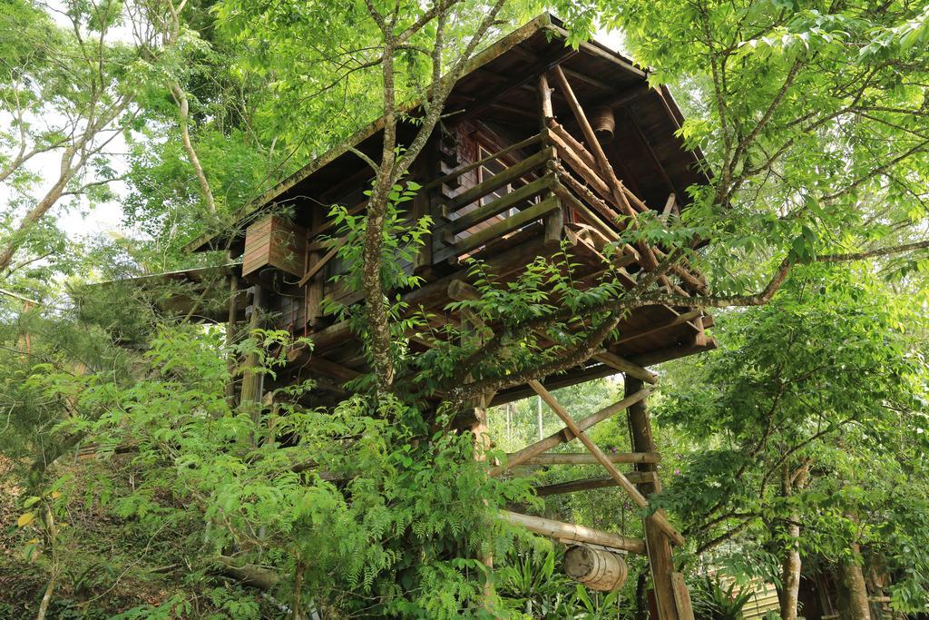 賴坤陽的家木屋民宿